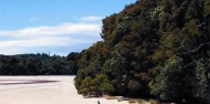 Guided Walk - Stewart Island Experience image 2